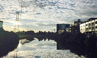 Photo of the Cooks River