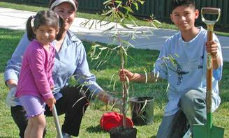 Photo of people taking part in Tree Planting