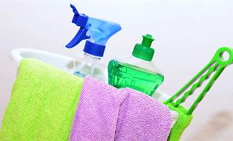 Photo of Green Cleaning products