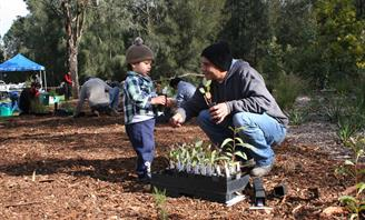 Photo of child planting tree