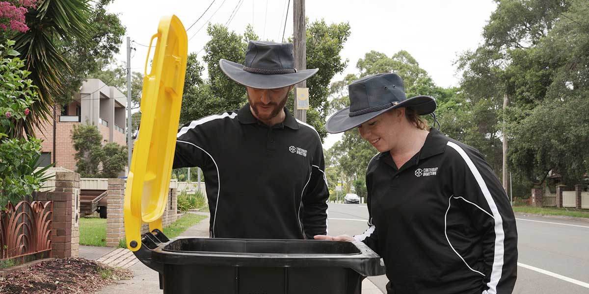 Photo of a recycling bin inspection